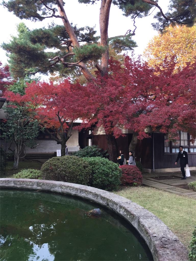 f:id:eitarokono:20161120183121j:image