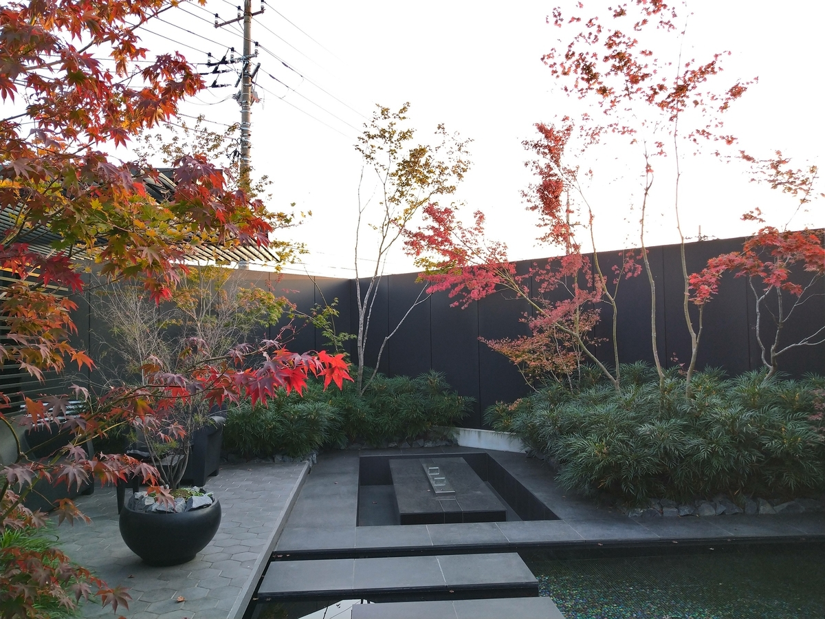 f:id:eiwa-garden:20201205191226j:plain