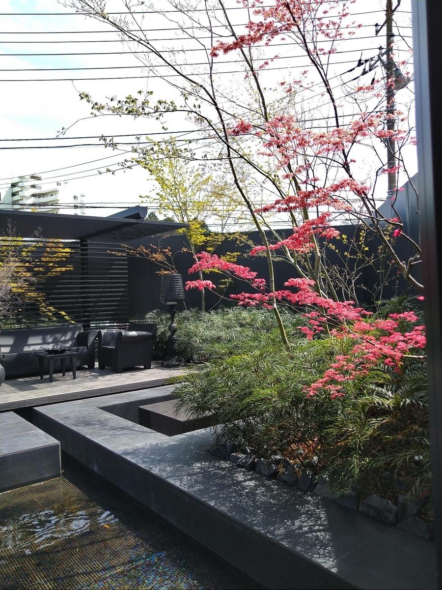 f:id:eiwa-garden:20210329192942j:plain