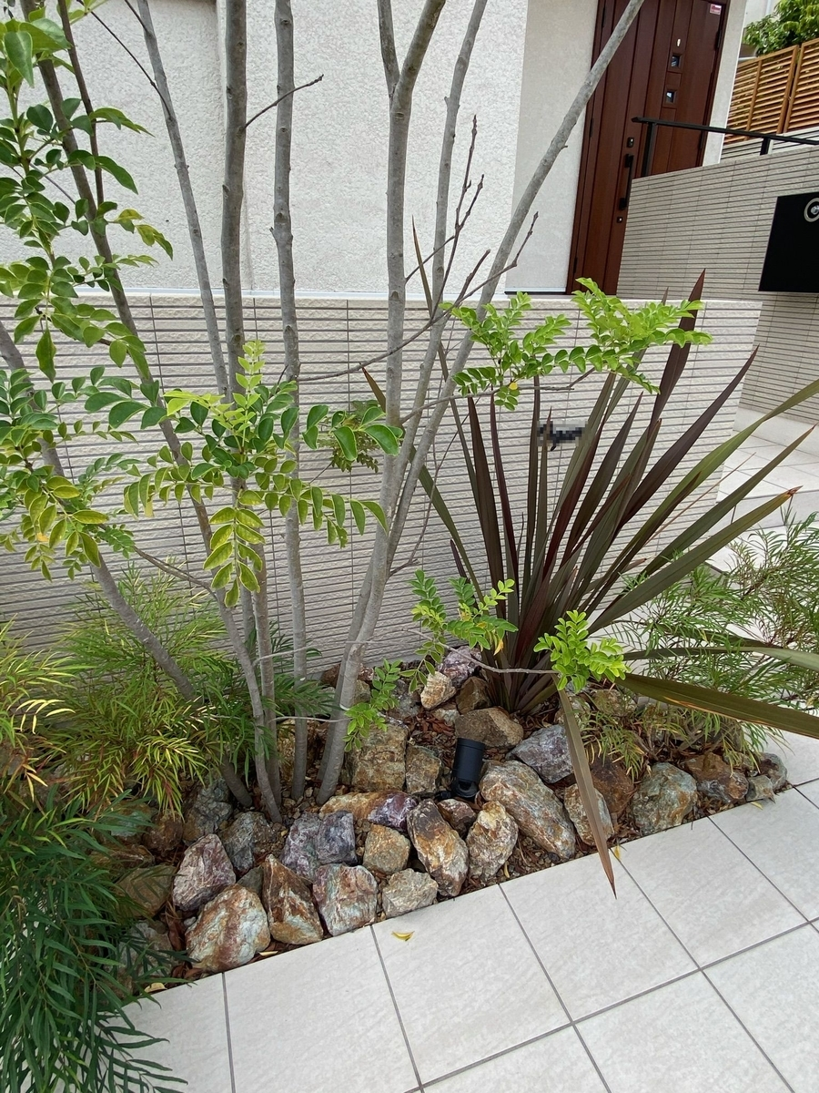 f:id:eiwa-garden:20210522175401j:plain