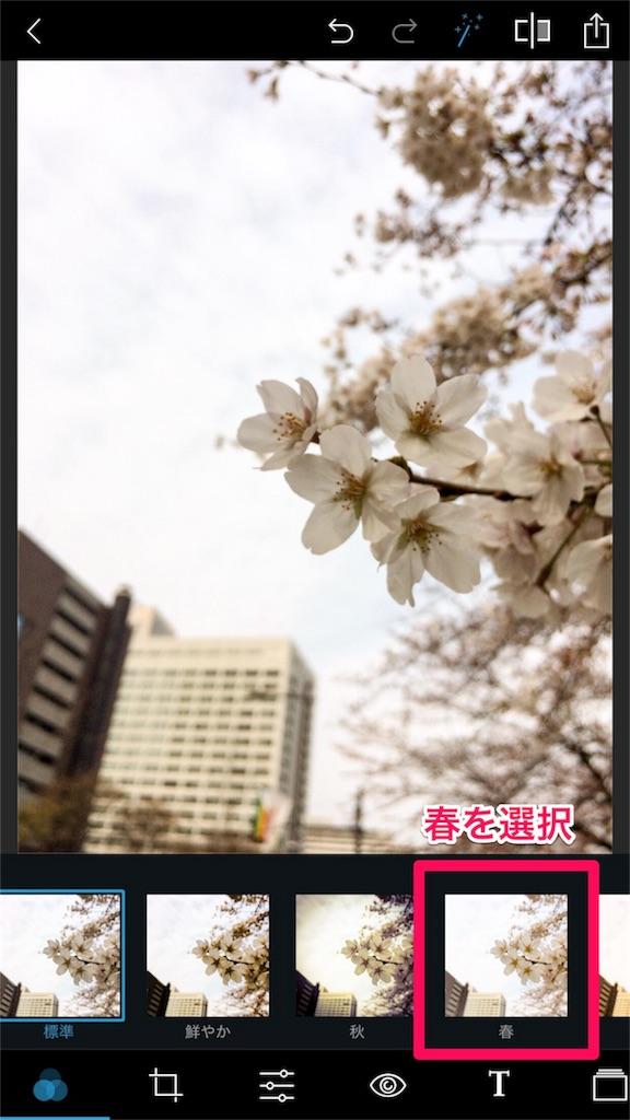 桜iPhone
