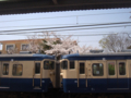 #2332 巌根(2007.04.01)