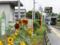 三岡駅上下交換(2016.07.17)
