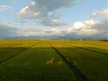 羽前金沢~羽前山辺(東側)の眺め