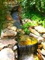 静かに流れる水と緑