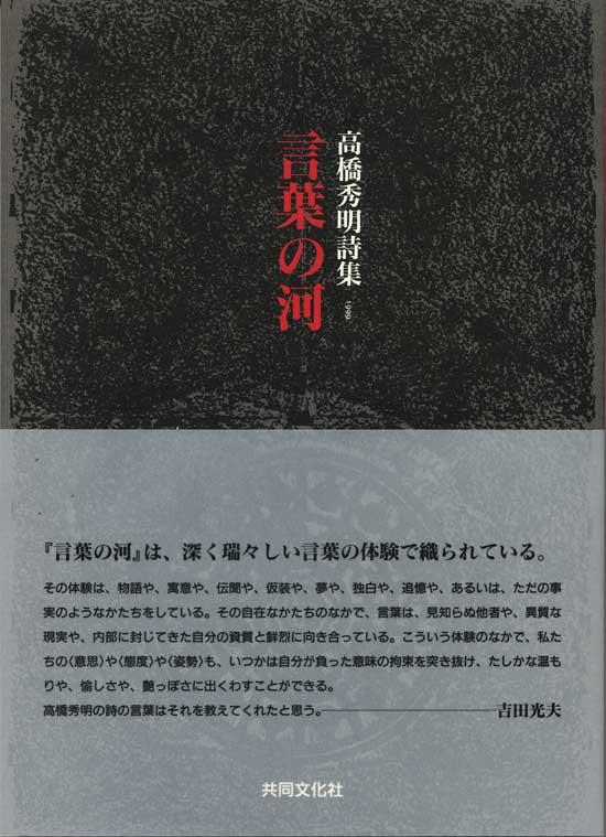 20101106162132