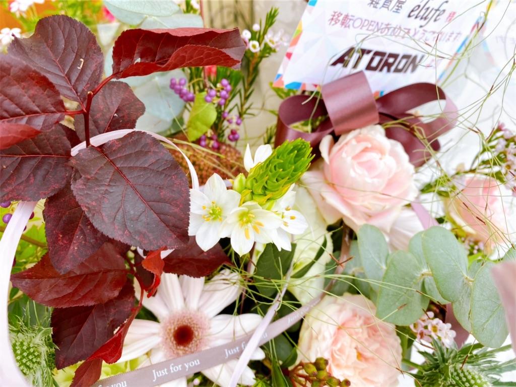 f:id:elufe_okinawa:20201021232433j:image