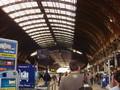 Paddington駅のホーム。広いよ。
