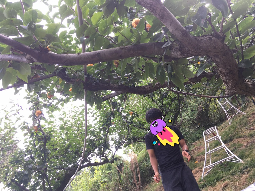 f:id:emi49oki:20170115025714j:image