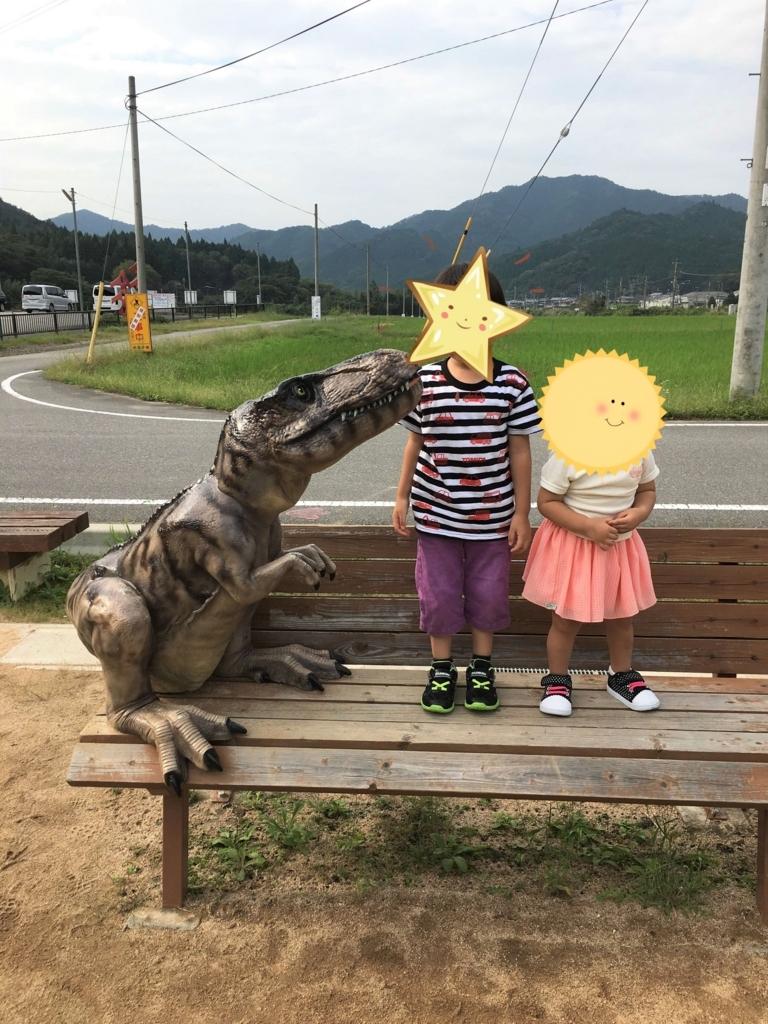 f:id:emiharukan:20170620160422j:plain