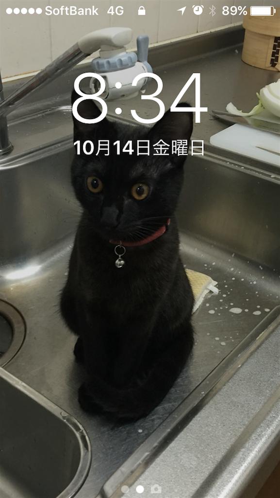 f:id:emikana:20161101212132p:image