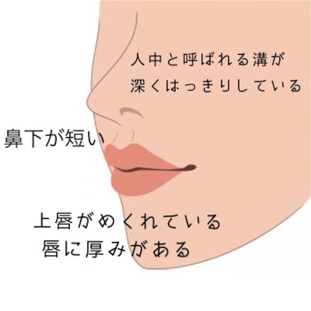 f:id:emiliaikemu4649:20200210025612j:image