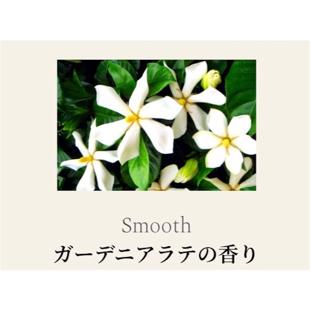 f:id:emiliaikemu4649:20200421071656j:image