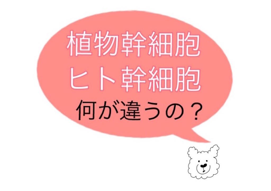 f:id:emiliaikemu4649:20200706015938j:plain