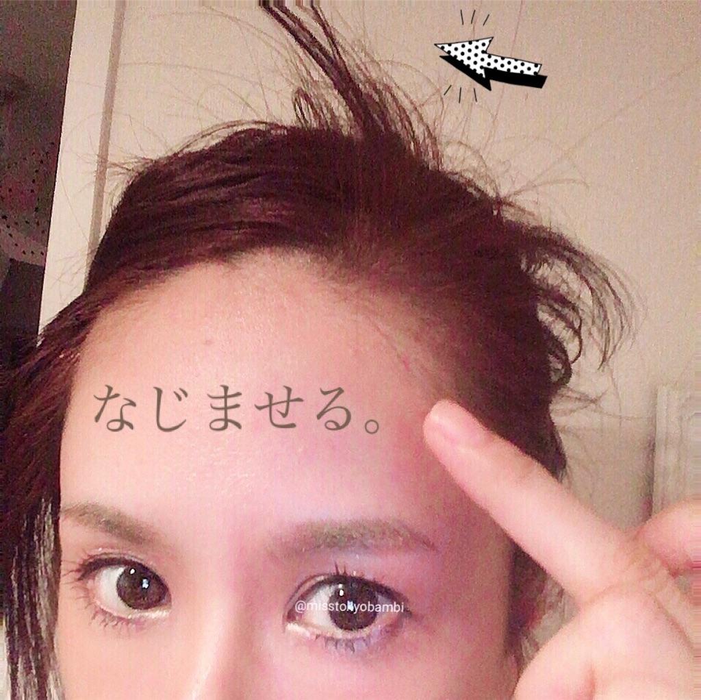 f:id:emiliaikemu4649:20200819211241j:plain