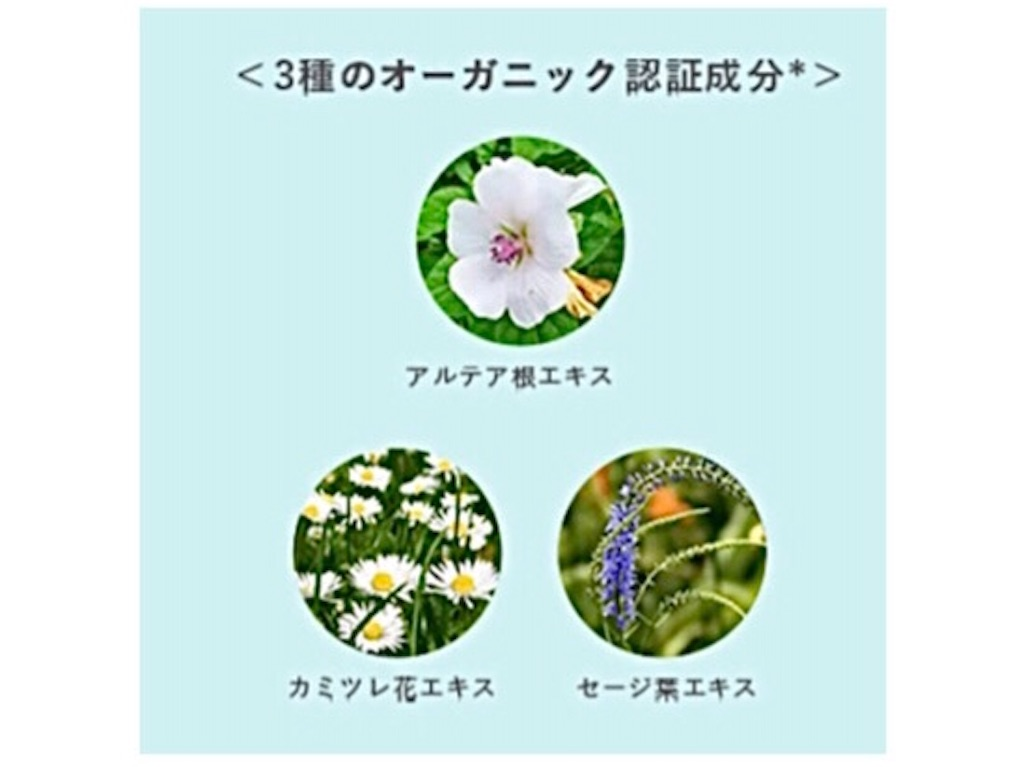 f:id:emiliaikemu4649:20201009001147j:plain