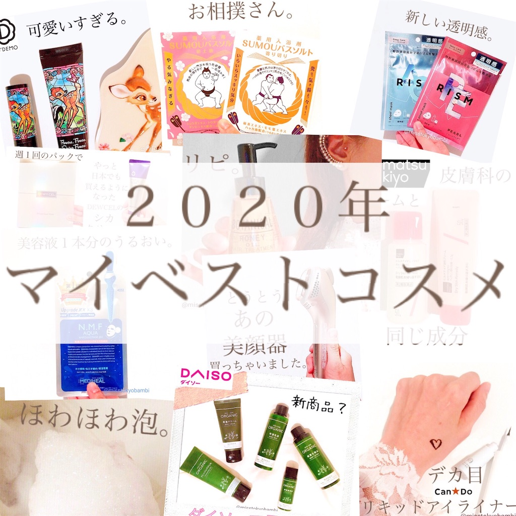 f:id:emiliaikemu4649:20201230211348j:plain