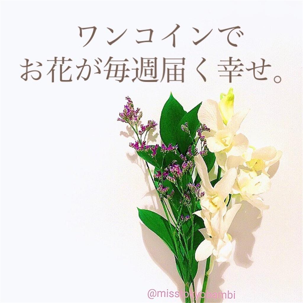 f:id:emiliaikemu4649:20210302184559j:plain