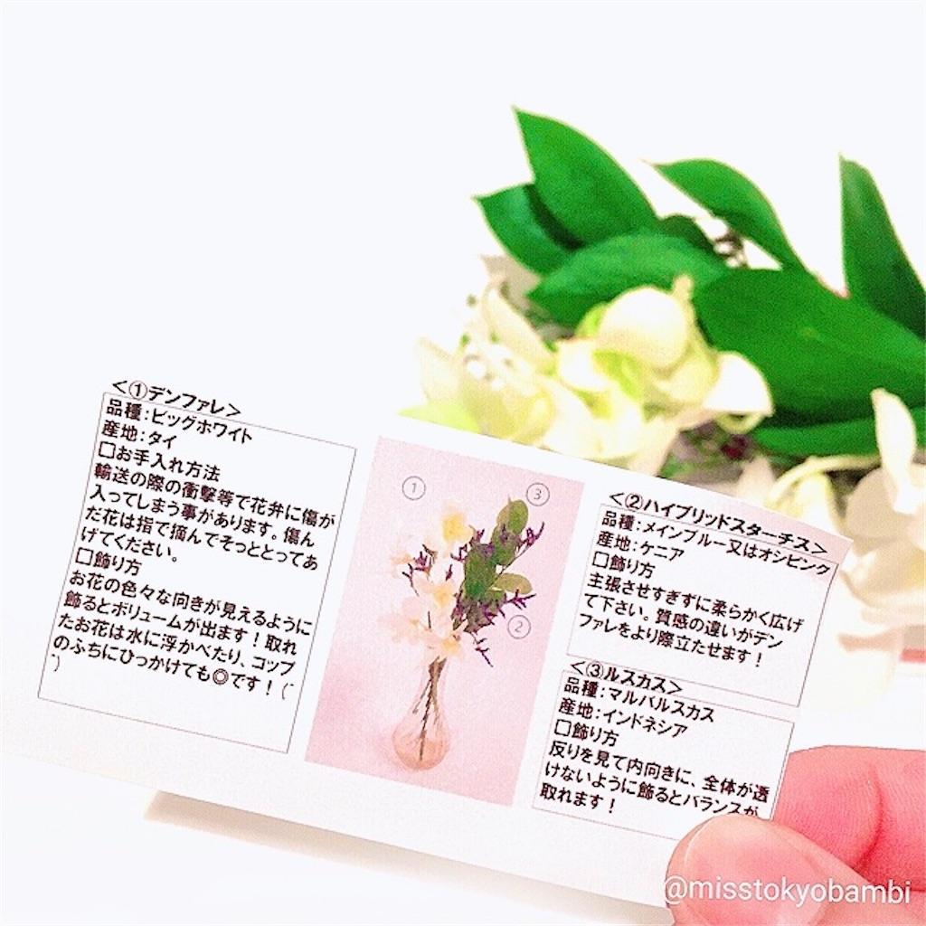 f:id:emiliaikemu4649:20210302184718j:plain