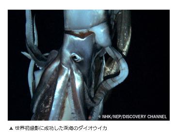 f:id:emiyosiki:20130427162313p:image:w360