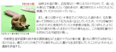 f:id:emiyosiki:20130616103240p:image:w360