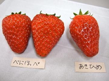f:id:emori015:20110324230433j:image