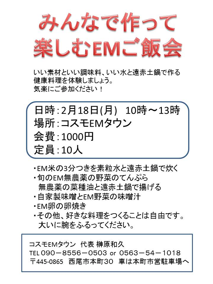 f:id:emtown:20190202001341j:plain