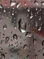嵐と雨だれ
