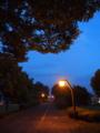 夕方の遊歩道