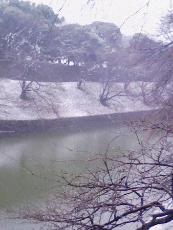 20080123161855