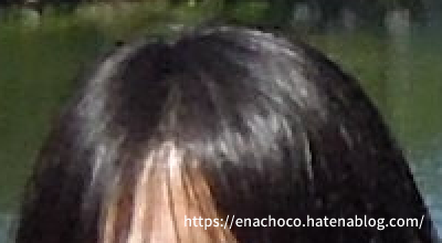 f:id:enachoco:20210411093218p:plain