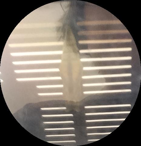 f:id:encho-sensei:20160629164532p:plain