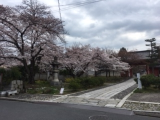 f:id:encho-sensei:20170406205954j:plain