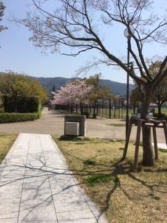 f:id:encho-sensei:20170414215821j:plain