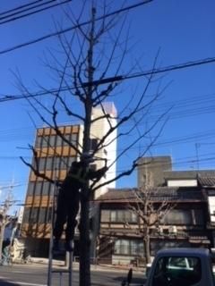 f:id:encho-sensei:20180207172602j:plain