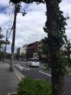 f:id:encho-sensei:20180510205450j:plain