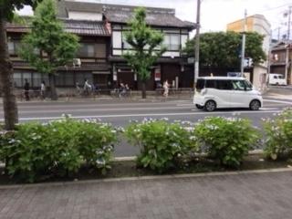 f:id:encho-sensei:20180618194521j:plain