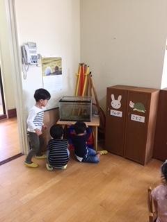 f:id:encho-sensei:20181009200656j:plain