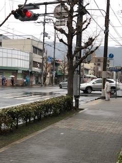 f:id:encho-sensei:20190219172803j:plain
