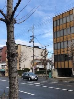 f:id:encho-sensei:20190316222622j:plain