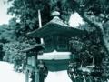 [kanagawa][kamakura][神奈川][鎌倉]鶴岡八幡宮