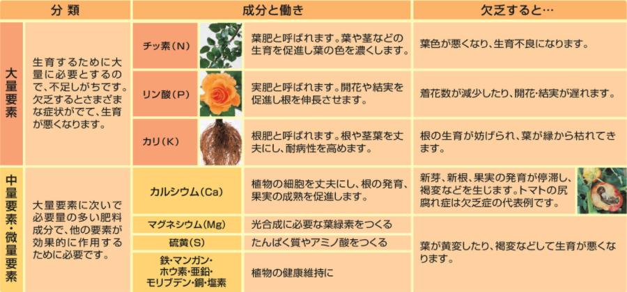 f:id:enjoy-efficient-life:20200602215957p:plain
