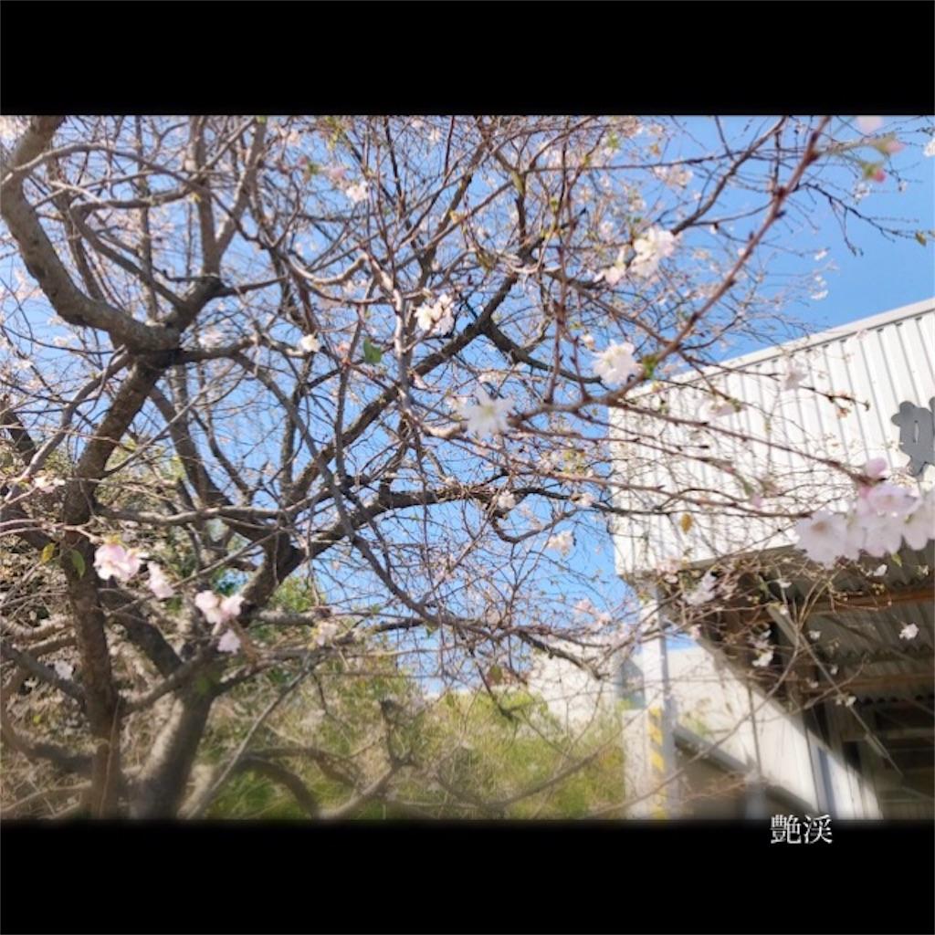 f:id:enkei4616579:20161223101555j:image