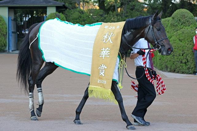 デアリングタクト(秋華賞馬)