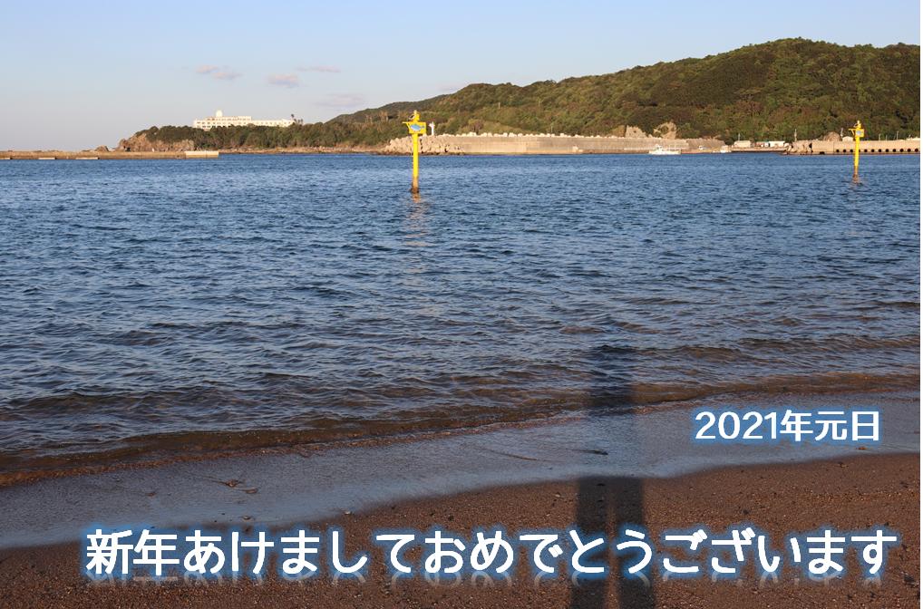 f:id:enoki3120:20201231230528p:plain