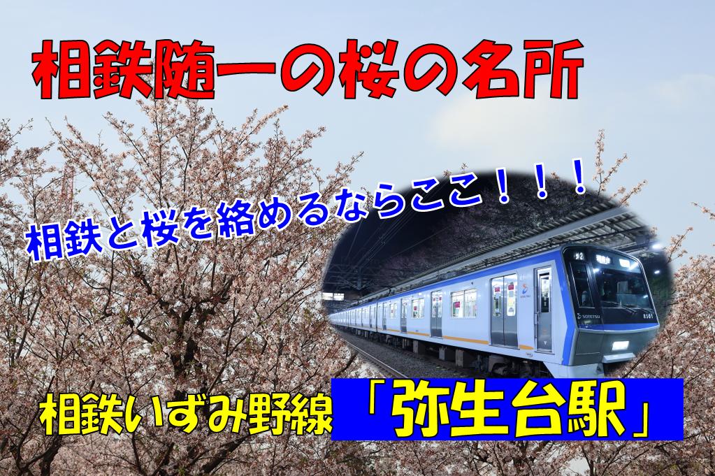f:id:enoki3120:20210510214659p:plain