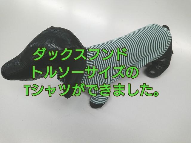 f:id:enoki47noi:20200910142627j:image