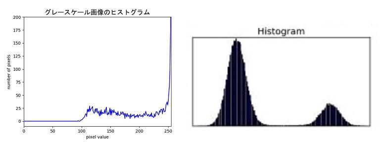 f:id:enokisaute:20210217173526j:plain