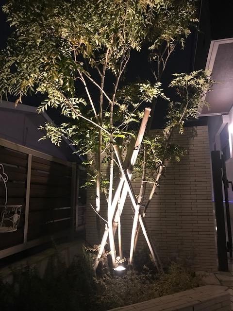 f:id:enoshima07:20191222010043j:plain
