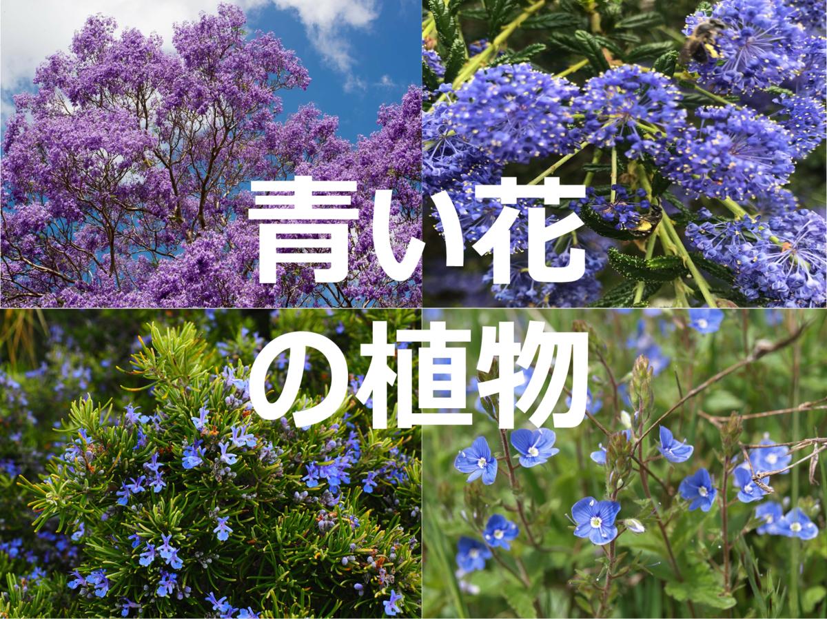 f:id:enoshima07:20200505210633p:plain